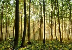 Superflowdesign Papier peint photographie Motif forêt magique