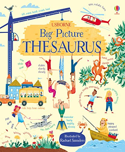 Big Picture Thesaurus por Rosie Hore