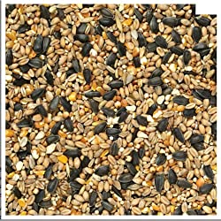 20KG SACK OF SUPERIOR MIX NUT FREE BIRD FOOD
