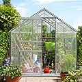 Gewächshaus Alu Fundament Treibhaus Gartenhaus Frühbeet Pflanzenhaus Aufzucht von Deuba - Du und dein Garten