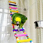 Bird Ladder Toy 12-Step Colorful Bird Climbing Toy Cage Stand for Parrot Budgie 9