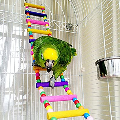 Bird Ladder Toy 12-Step Colorful Bird Climbing Toy Cage Stand for Parrot Budgie 2
