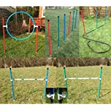 colourful jessejump dog agility training starter kit. (due to amazons new postage policy we can only post this item to mainland uk (England, Wales,