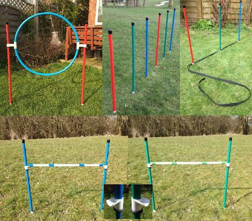 Jessejump Dog Agility Training Starter Kit