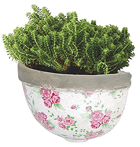 Half Round Wall Mounted Planter