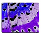 luxlady Mousepads Schöne Multicolor aus Leopard Florfliegen Schmetterling Cethosia Cyane Bild 39317404Individuelle Art Desktop Laptop Gaming Mauspad