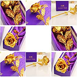House of Gift Great Valentine's Gift 24K Gold Rose With Gift Box And Carry Bag - Best Gift For Loves Ones, Valentine's Day, Mother's Day, Anniversary, Lover's Flower Gold Dipped Rose With Gift Box For Women Girls Gifts. (GOLD)