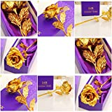 House of Gift Great Valentine's Gift 24K...
