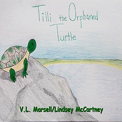 Tilli the Orphaned Turtle (English Edition)