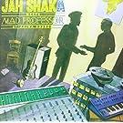 Meets Mad Professor at Ariwa Sounds [Vinyl LP]