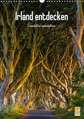 Irland entdecken (Wandkalender 2018 DIN A3 hoch): Irische Landschaften (Monatskalender, 14 Seiten ) (CALVENDO Natur) [Kalender] [Apr 01, 2017] Ringer, Christian (1 Ringer)