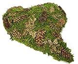 Moosherz grün mit Zapfen geschwungen 27cm x 20cm Trauerherz Grabunterlage Herz aus Moos Herzunterlage Moos-Herz Grabschmuck Grabherz
