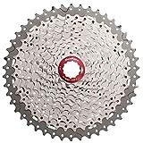 SunRace Kettenblatt MX8für Mountainbike 11Gänge, 11-46 Zähne