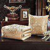 HOME UK- Multifunktions-Eis-Silk Kissen Quilt Dual-Use-Auto-Kissen Büro-Sofa Falten Mittagspause Klimaanlage Quilt Lendenkissen Nachtrücken ( farbe : Gold )