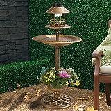 My Garden Path Abreuvoir et mangeoire pour oiseau effet bronze avec lampe solaire