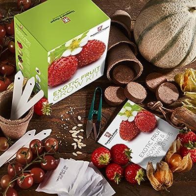 Exotische Frucht- Samen Wachstums Set Geschenkbox von Thomspon & Morgan - 5 fruchtig Aromen to Grow ; Erdbeere, Melone, Cherrytomate, Physalis & Gurke Samen von Thompson & Morgan bei Du und dein Garten