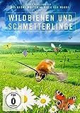 Wildbienen und Schmetterlinge kostenlos online stream