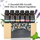 Luckyfine Aceites Esenciales Naturales Perfume de Aromaterapia Kit de...