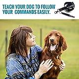 LUPO® Premium Hunde Pfeife um Bellen zu stoppen Gehorsamkeit Abweisend Haustier Training Hilfe - 7