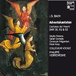 Bach : Cantates de l'Avent - BWV 36,...