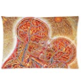 Lepilo Custom Alex Gray Custom Rectangle Zippered Pillow Cases 20x30 (Two Sides) VFR-83