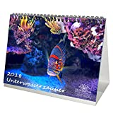 Premium Tischkalender / Kalender 2018 · DIN A5 · Unterwasserzauber · Unterwasser · Tauchen · Fische · Meer · Edition Seelenzauber