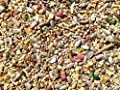 12.55kg Super Premium Wild Bird Seed - All Season Mix With Mealworms & Suet Pellets by Pet Performance