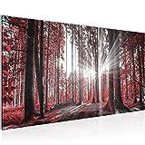 Bilder Wald Landschaft Wandbild 100 x 40 cm Vlies - Leinwand Bild XXL Format Wandbilder Wohnzimmer Wohnung Deko Kunstdrucke Rot 1 Teilig -100% MADE IN GERMANY - Fertig zum Aufhängen 503812c