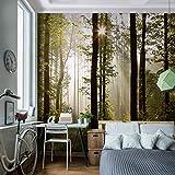 Fototapete Wald 352 x 250 cm - Vliestapete - Wandtapete - Vlies Phototapete !!! 100% MADE IN GERMANY !!! Wand - Wandbilder XXL - Runa Tapete 9010011a