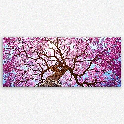 ge Bildet hochwertiges Leinwandbild Panorama XXL Pflanzen Bilder - Rosa Lapacho Baum in Pocone - Brasilien - Natur Baum Pink Lila - 120 x 50...
