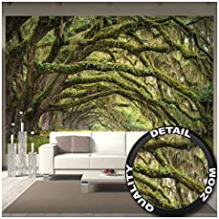 Idea Regalo - GREAT ART Fotomurale - Viale Quercia - Decoratione da Parete Poster Murale Estate Foresta Muschio Mistic Oak Quercus Bosco delle Fiabe Parco Rami Carta da Parati (336 x 238 cm)