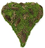 Moosherz grün mit Zapfen spitz 33cm x 28cm x 6cm Trauerherz Grabunterlage Herz aus Moos Herzunterlage Moos-Herz Grabschmuck Grabherz
