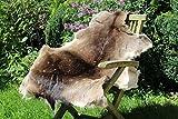 Alpenfell Damwild Damhirsch Damfell Damhirschfell Rehfell *Winterqualität* - ökologische Gerbung - 110 x 80 cm