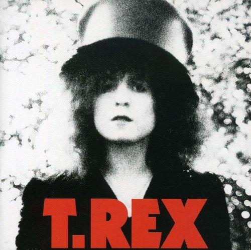 The Slider/Standard - T-trex