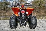 Kinder Quad S-10 125 cc Motor Miniquad 125 ccm orange Warriorer - 4