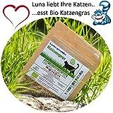 Prime Graines d'herbe chat BIO Lunas ♥ - 1 sachet avec mélange de graines 30g pour environ 15 pots d'herbe à chat prête à l'emploi dans un sac refermable