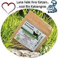 SiS Lunas Bio Katzengrassamen ♥ - 1 Beutel mit 90g Saatmischung für ca. 45 Töpfe fertiges Katzengras in wiederverschliessbarem Beutel