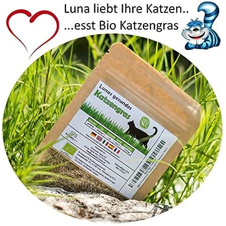 SiS Successfulldeas – SOLUTIONS – Lunas Bio Katzengrassamen – 1 Beutel mit 90g Saatmischung für ca. 45 Töpfe fertiges Katzengras in wiederverschliessbarem Beutel