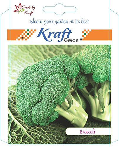 Broccoli (Pack of 5) by Kraft Seeds