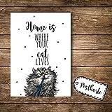 ilka parey wandtattoo-welt® A6 Postkarte Ansichtskarte Flyer Katze mit Spruch Home is where your cat lives pk092