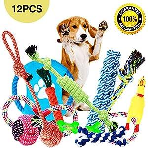 arum wäht man Parner?  1. Parners verfügt über 12 verschiedene Spielzeugeund bietet eine große Auswahl an Spielen, die langfristigen Spaß garantieren und ideal für kleine und mittelgroße Hunde sind. 2. Hochwertige Qualität: Das Spielzeug von Parner i...