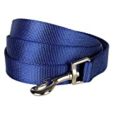 Blueberry Pet Durable Classic Solid Color Dog Lead 120 cm x 2.5cm in Royal Blue, Large, Basic Nylon Leads for Dogs, Matching Collar & Harness Available Separately