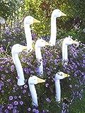 Tangoo Keramik Gartenfigur Gartenstecker