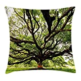 Nature Throw Pillow Cushion Cover, The Largest Monkey Pod Tree in Thailand Eastern Green Big Branches Growth Eco Photo, Decorative Square Accent Pillow Case, 18 X 18 inches, Green Brown
