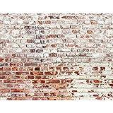 Fototapete Steinwand 396 x 280 cm Vlies Wand Tapete Wohnzimmer Schlafzimmer Büro Flur Dekoration Wandbilder XXL Moderne Wanddeko - 100% MADE IN GERMANY Runa Tapeten 9083012b
