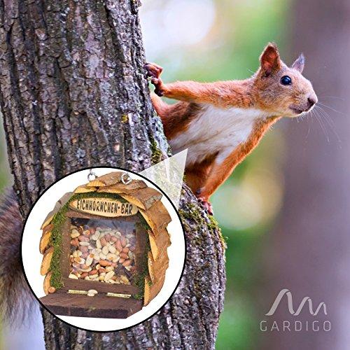 Gardigo Eichhörnchen-Bar Futterspender aufhängbares Futterhaus aus Holz naturfarben - 4