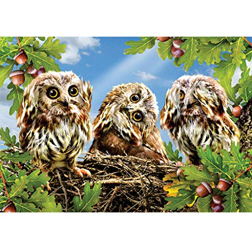 5D Diamond Painting Kits Vollbohrer Diamant Tierstickerei von QinMM
