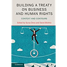 Building a Treaty on Business and Human Rights: Context and Contours