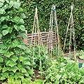 Tildenet GC-3 Bambusstäbe, 90 cm, ideal zur Verwendung im Garten von Tildenet Gardenware auf Du und dein Garten