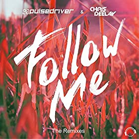 Pulsedriver & Chris Deelay-Follow Me (The Remixes)